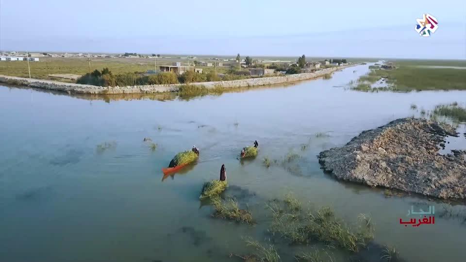 مملكة القصب - أهوار العراق