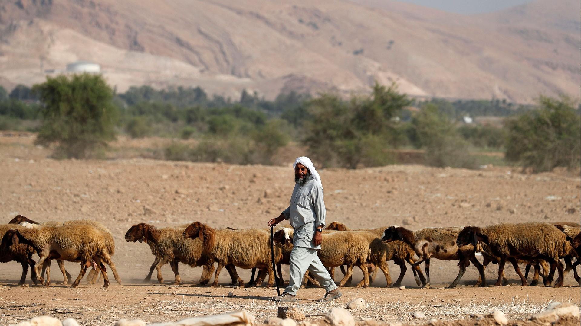 مخططات إسرائيل للاستلاء على أراضي النقب