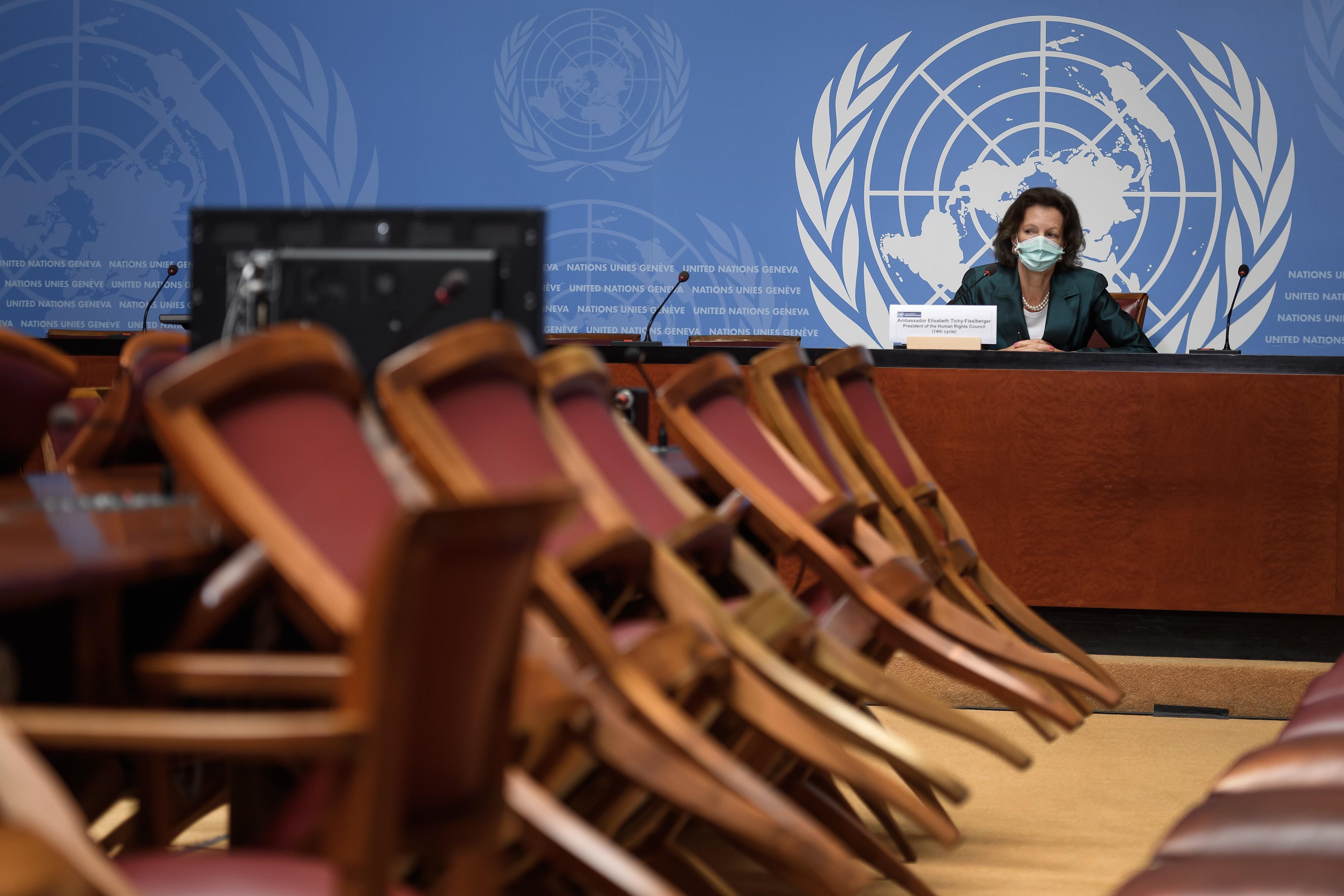 الأمم المتحدة وحقوق الإنسان في مصر